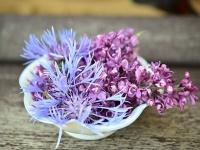 Blumendeko für Geschenke ohne Plastik